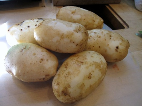 sliced the potatoes and tossed them generously with salt and pepper ...