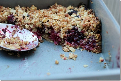 Mixed Berry Oat Crumble by Daily Garnish