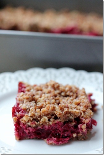Vegan Cranberry Crumble Bars by Daily Garnish