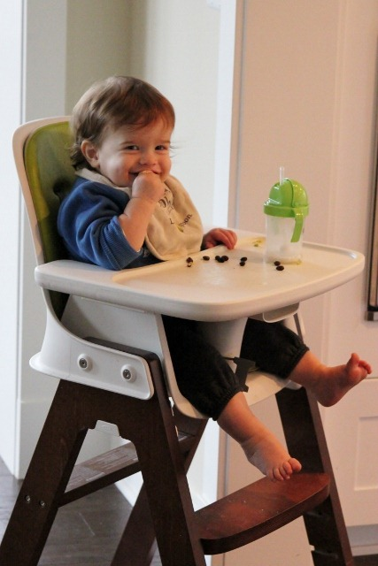 The Highchair. IMG_8227 (427x640) · Oxo Tot Sprout ...