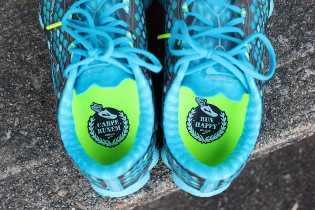 02e0762910c Running Updates (  A Brooks Shoe Giveaway!) - Daily Garnish