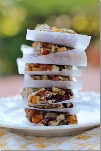 Homemade Fruit & Nut Bars by Daily Garnish